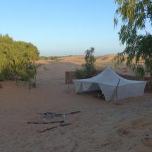 Desert (3)