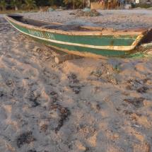 Sénégal soleil (11)