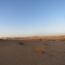 desert (14)