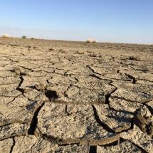 desert (16)