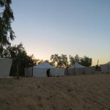 desert (8)