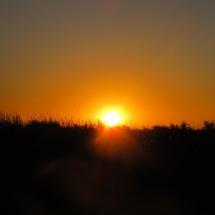 soleil (7)