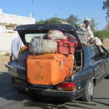 transport (15)